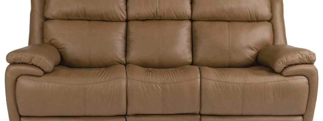 Homes With Pets Need Leather Furniture